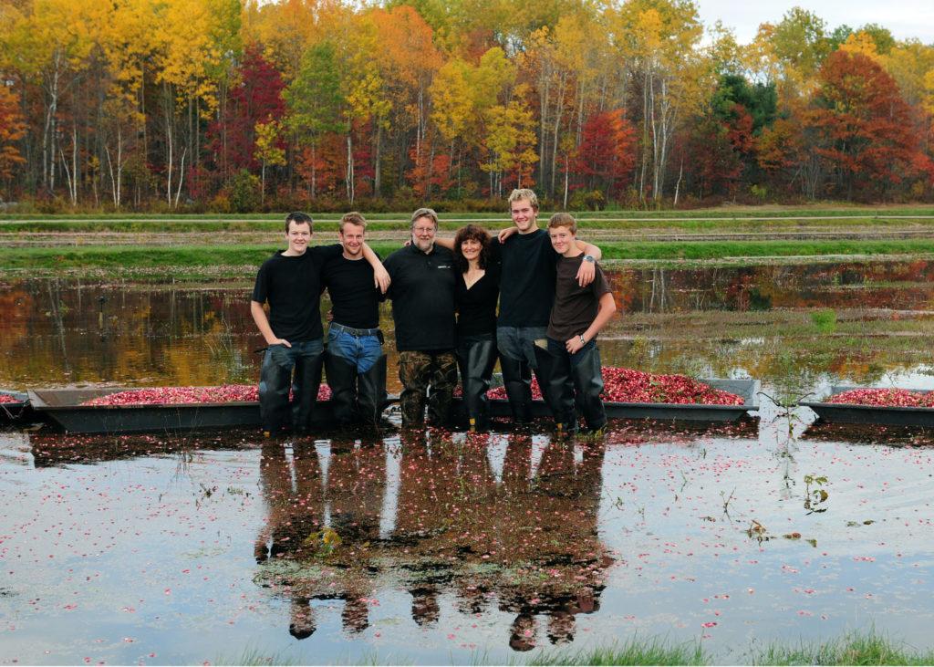 cranberry-marsh